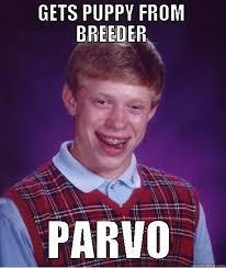 Vet Tech Memes - emergency vet tech memes quickmeme vet days pinterest