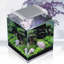 Fish Tank Desk by Sunsun 33l Best Mini Round Glass Aquarium Fish Tanks For Sale