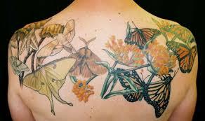 moth tattoos inspiring tattoos