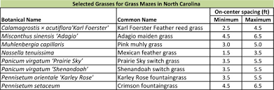 grass mazes learning initiative