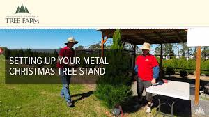 setting up your metal christmas tree stand youtube
