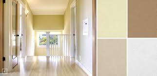 paint colours for halls home design