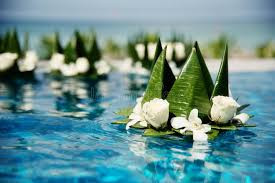 floating flowers floating flowers in pool stock image image of floating 84836129