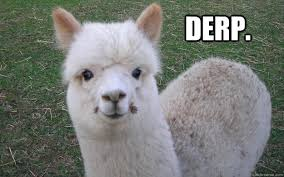 Alpaca Memes - alpaca memes google search alpacas pinterest alpacas and animal