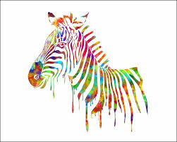 zebra pictures ebay