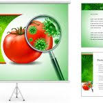 food safety powerpoint template ba shower food powerpoint template