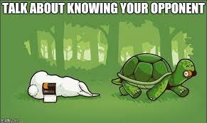 Tortoise Meme - sneaky tortoise imgflip