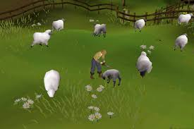 Rs07 Map Sheep Shearer Old Runescape Wiki Fandom Powered By Wikia