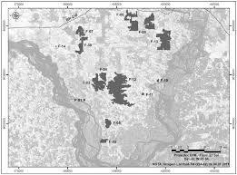 Uconn Storrs Map Bryophytes In Fragments Of Terra Firme Forest On The Great Curve