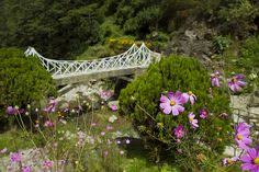 Rock Garden Darjeeling Rock Garden Darjeeling Gardens In Darjeeling Attractions In