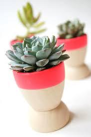 Wohnzimmer Pflanzen Ideen Dekorative Pflanzen Fürs Wohnzimmer Erstaunlich Auf Ideen Zusammen
