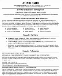 Business Consultant Sample Resume by 22 Simple Business Resume Templates Free U0026 Premium Templates