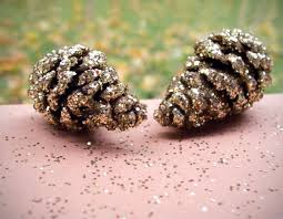 wear the canvas diy fri glitter pine cone decorations