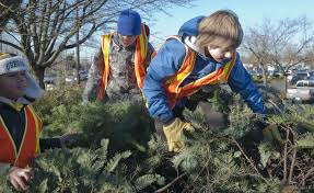 tree recycling a fundraising opportunity for nonprofits
