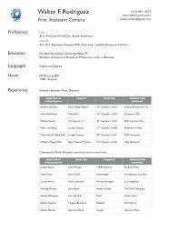 Example Of Resume In English Resume Writing Language Skills