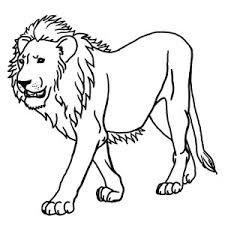 cartoon lion coloring color luna 14902 bestofcoloring