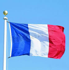 Image Of French Flag Oriflamme 3ftx2ft France Flag National Flags Super Poly Hanging