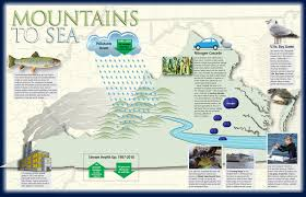 Eastern Shore Virginia Map by Following The Flow Virginia Magazine