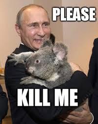 Putin Meme - these putin memes are illegal in russia album on imgur