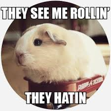 They See Me Rollin They Hatin Meme - they see me rollin meaning of they see me rollin at dictionary com