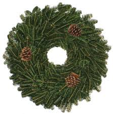 fraser fir tree carolina fraser fir company fraser fir christmas trees wreaths