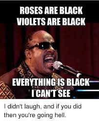 Everything Meme - roses are black violets are black everything is black i can t see