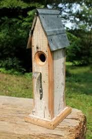 The Backyard Bird Company - the backyard bird company wa rjs sunflower bluebird convertible