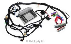 vn vs ls1 gen 3 conversion wiring loom u0026 ecu custom