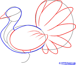 draw an easy turkey step by step drawing sheets added by dawn