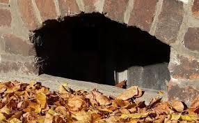 3 helpful tips for cleaning basement window wells jdi windows