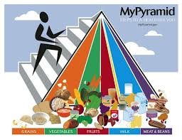 food pyramid makeover how the south beach diet abs diet and