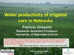 irrigated corn water productivity of irrigated corn in nebraska this cornfield