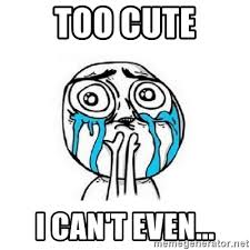 Too Cute Meme Face - too cute i can t even crying face meme generator