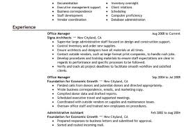 project manager cv template sample project manager resume full size of resumepleasant idea
