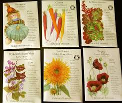 cheap seed packets 61 best seed packet images on sweet peas sugar snap