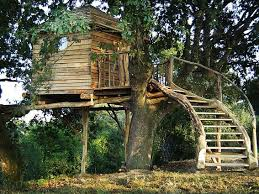 Cool Tree Houses 99 Best Cool Tree Houses Images On Pinterest Treehouses Home