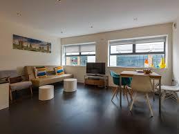 bright luxury spacious quiet bright luxury 1bd loft flat central
