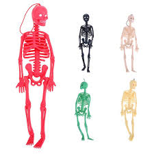 Human Anatomy Full Body Picture Online Get Cheap Human Body Toy Aliexpress Com Alibaba Group