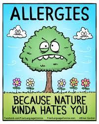 Allergy Meme - the 25 best allergies funny ideas on pinterest 9gag face
