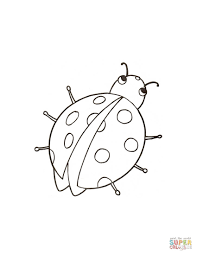 little ladybird coloring page free printable coloring pages