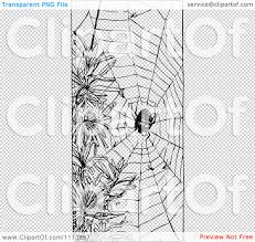 spider web transparent background clipart vintage black and white spider and web royalty free