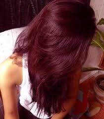light mountain natural hair color black henna hair dye medium brown hair pinterest henna hair dyes