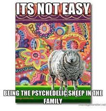 Psychedelic Meme - 25 best memes about imgur meme generator imgur meme