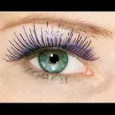 blue false self adhesive eyelashes ebay