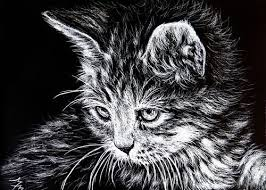 cat aceo original scratchboard scratch art kitten baby face feline