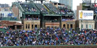 no joy in wrigleyville as cubs neighbors clash