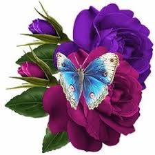 beautiful butterfly gif images at best animations