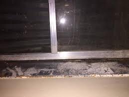 How To Paint Interior Windows Paint Interior Windows Best 25 Black Window Trims Ideas On