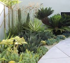 best 25 contemporary garden design ideas on modern