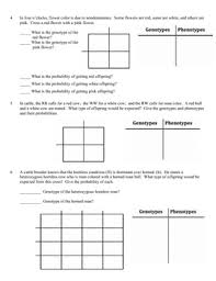 genetics practice problems worksheet incomplete dominance